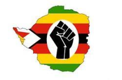 Zimbabwe Million Citizen March, 1st March 2011